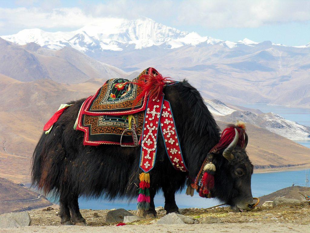Свастика как оберег Тибет